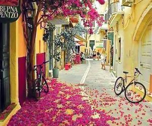 flowers, Greece, and pink image