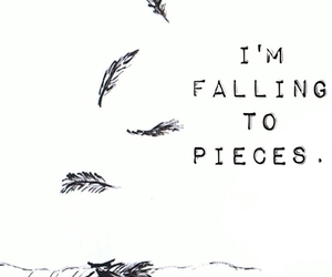 feathers, Lyrics, and song image