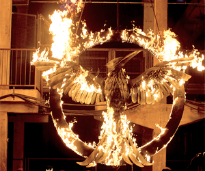 mockingjay, the hunger games, and fire image