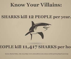 shark, villain, and animal image