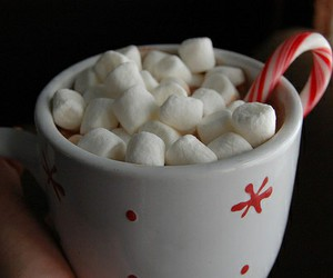 christmas, marshmallow, and candy image