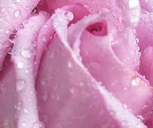 fashion, pastels, and pink image