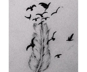 bird, art, and feather image