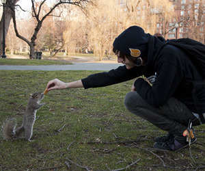 boy, cute, and squirrel image