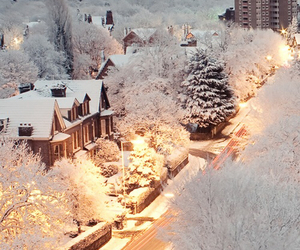 christmas, city, and cute image