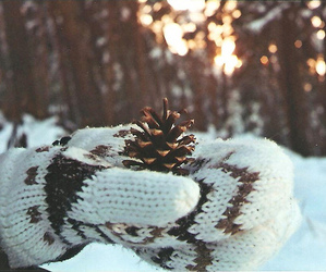 winter, snow, and gloves image