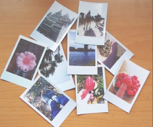 pictures and polaroid image