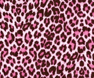 girl, girly, and leopard image