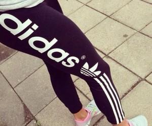 adidas, fitness, and nike image