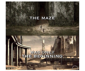 maze, the maze, and the maze runner image