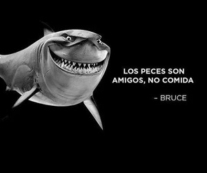 bruce, comida, and peces image