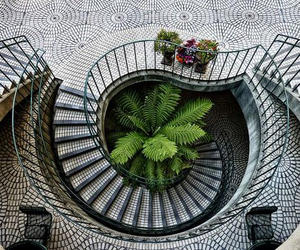 stairs, plants, and architecture image