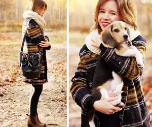 dog, fashion, and outfit image