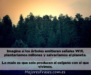 frases, citas, and frases bonitas image