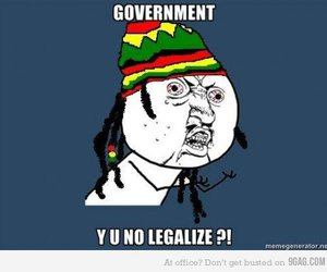government, rasta, and weed image