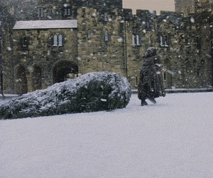 harry potter and harry gif image