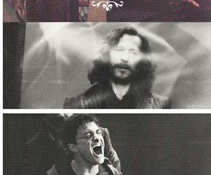 harry potter, family, and sirius black image