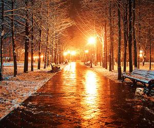 bench, light, and night image