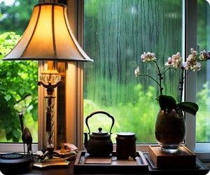 home, rain, and flowers image