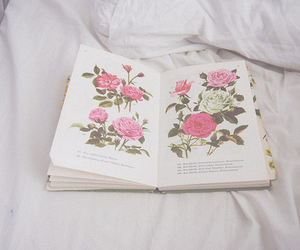 beautiful, book, and pages image