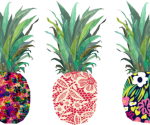 pineapple, transparent, and tumblr image