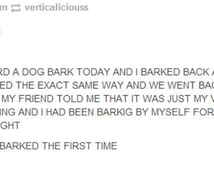 bark, crazy, and dog image