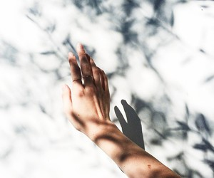 hand, shadow, and white image