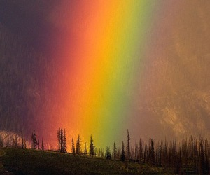 rainbow, nature, and colors image