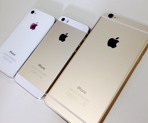 6, apple, and white image