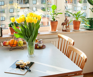 flowers, kitchen, and room image