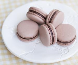 chocolate, curd, and yuzu image
