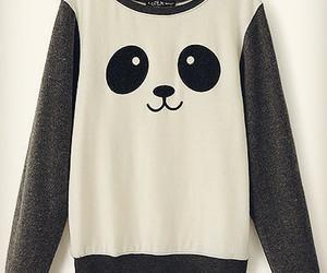 panda, cute, and sweater image