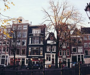 amsterdam, nature, and autumn image