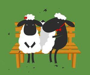 love and sheep image