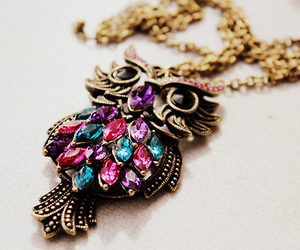 jewelry and owl necklace image