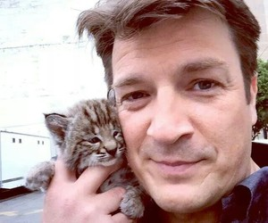 castle, cat, and nathan fillion image