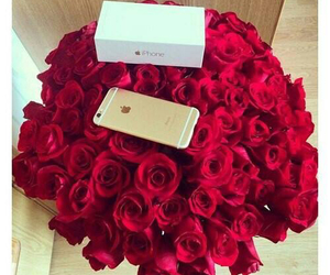 fashion, rose, and iphone 6 image