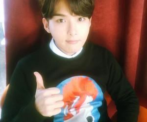 ryeowook, SJ, and suju image