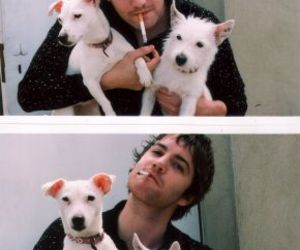 dog and jim sturgess image