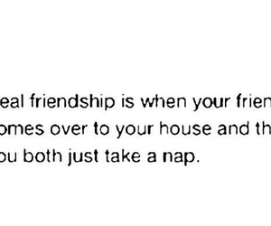 friendship, nap, and phrases image