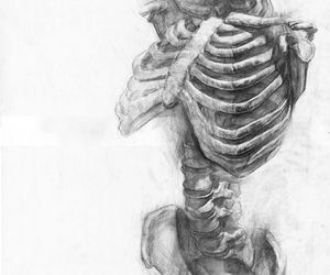 skeleton, art, and drawing image