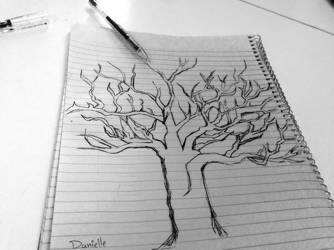 my tree drawing uploaded by danielle levy on we heart it