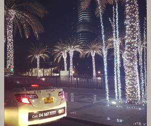 Dubai, light, and palmtrees image
