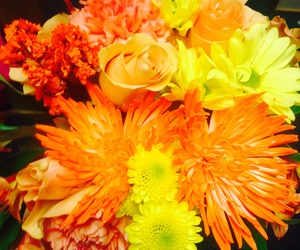 fall, flowers, and love image