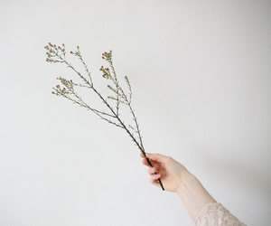 hand, flower, and girl image