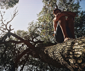 boy, photography, and tree image