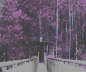 header, purple, and layout image