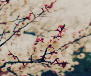header, layout, and liam payne image