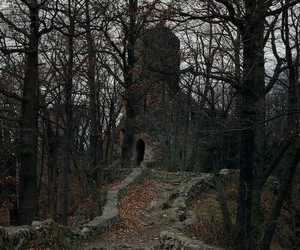 castle, dark, and forest image