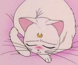 cat, sailor moon, and pink image